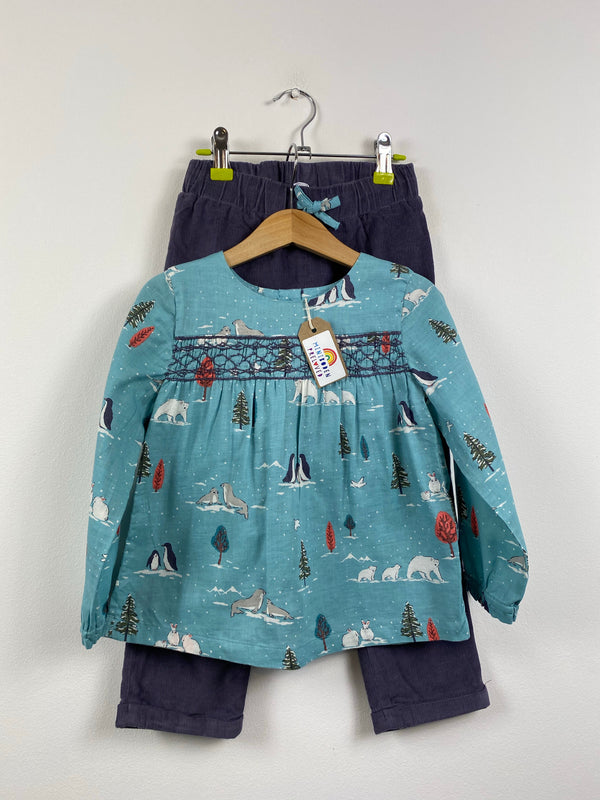 Arctic Life Blouse & Purple Cord Trousers Set (3-4 Years)