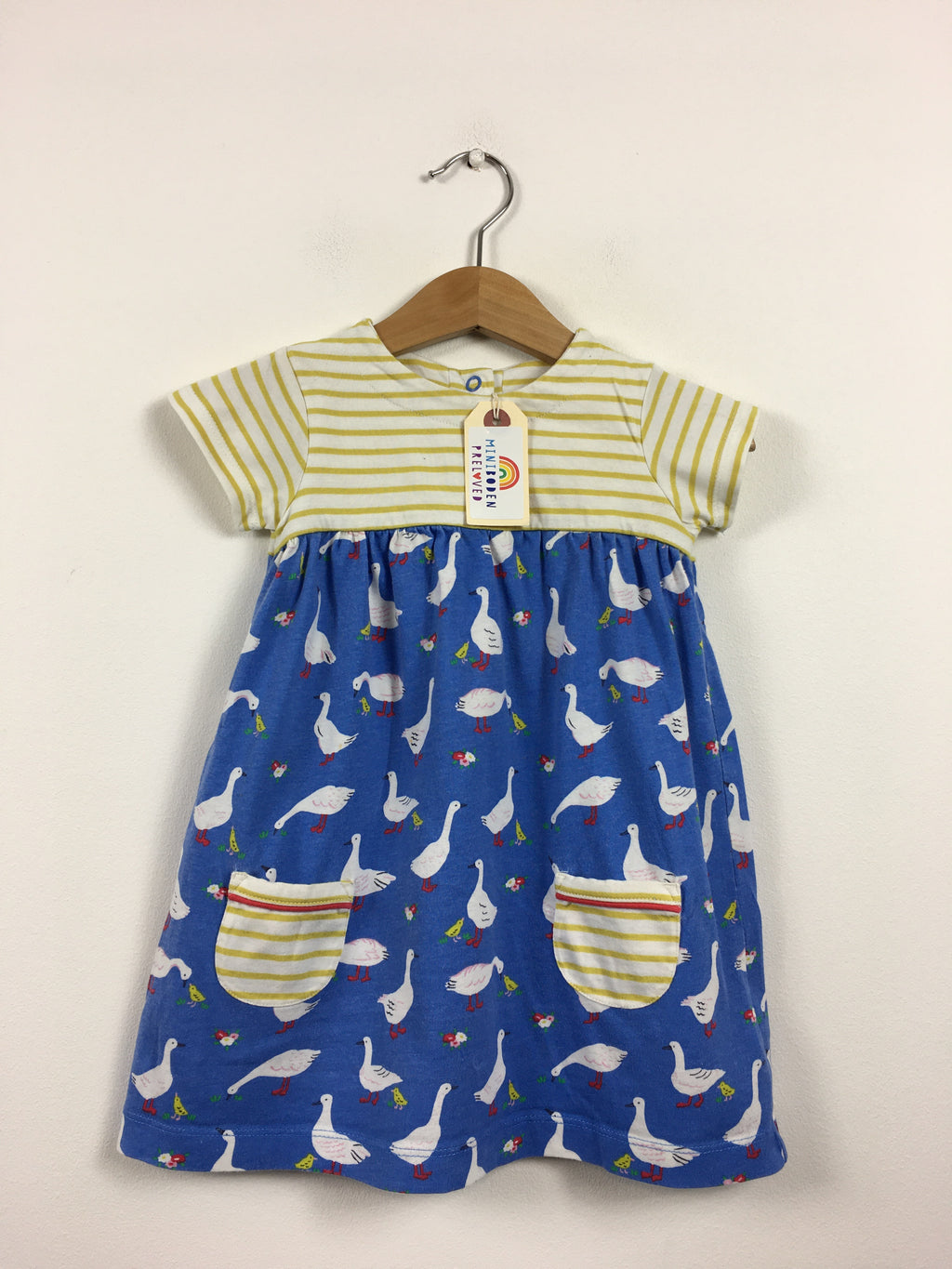 Blue & Yellow Goose Print Hotchpotch Dress (6-12 Months)