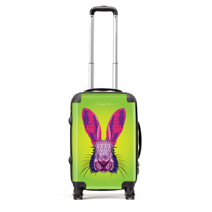 Hare - Suitcases - Art By Catherine Davis