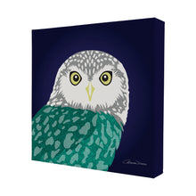 Owl - Mini Canvas - Art By Catherine Davis