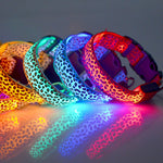 Leopard LED Dog Collar - Elegant Shoppers