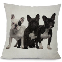 French Bulldog Pillows - Elegant Shoppers