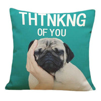 Pug Pillow Covers - November Edition
