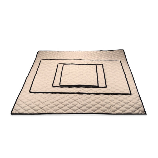 Elegant Thin Car Mat