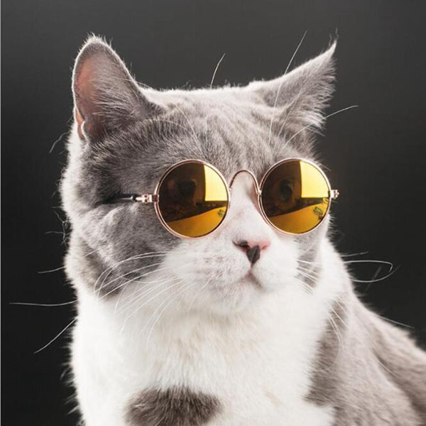 Elegant Cat Shades - Elegant Shoppers