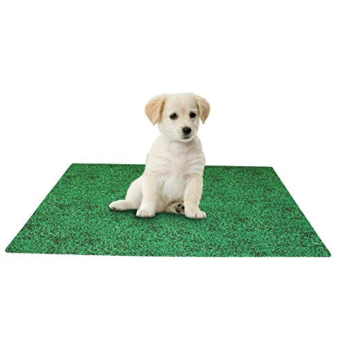 Leak Resistant Puppy Potty Pad 1 Each Green 20X 28""
