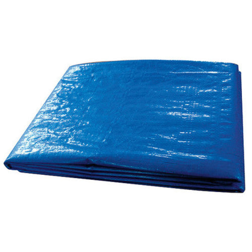 Tarp, Flame Resistant, Polyeth, 10x12Ft
