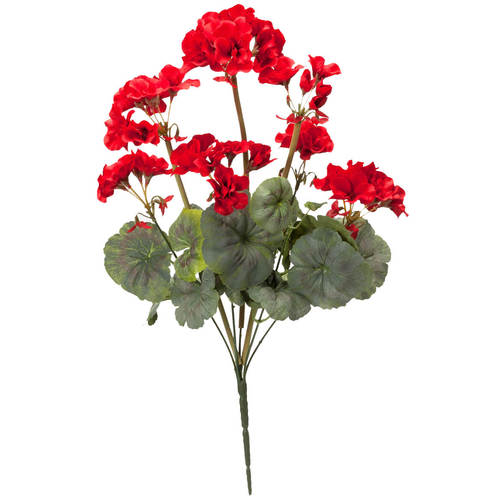Geranium Bush by OakRidge™-Red