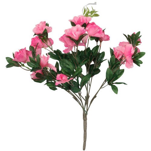 Azalea Bush by OakRidge™-PINK