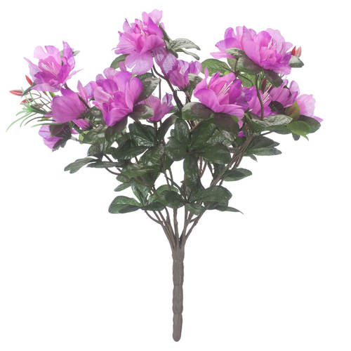 Azalea Bush by OakRidge™Purple