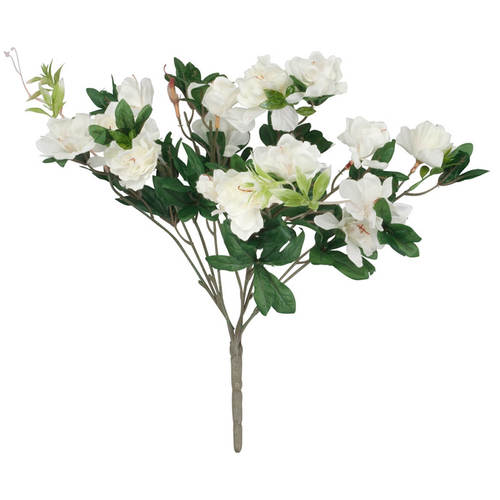 Azalea Bush by OakRidge™-White