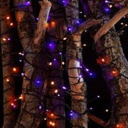 Set of 2 LED Seasonal String Lights
