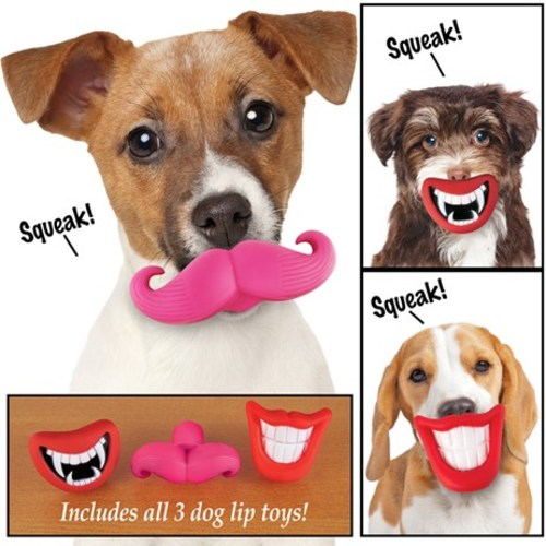 Dog Lips Squeaking Chew Toys - Set Of 3