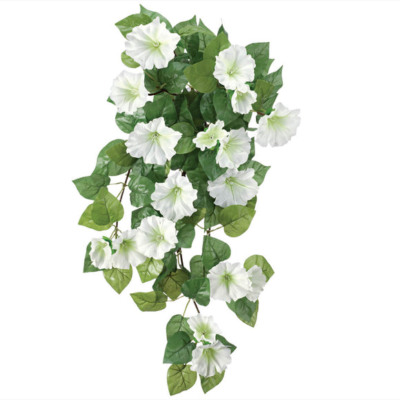 Petunia Hanging Stem by OakRidge Outdoor-White