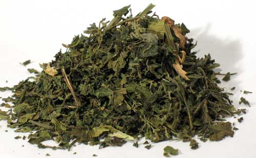 "Fortune Telling Supplies Herbs Nettle ""Stinging"" Leaf cut 1oz Shield Poisonous Thoughts Intentions"