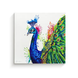 Percival Peacock - Canvas