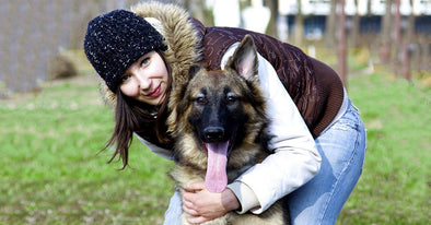 10 Things All German Shepherd Owners Have In Common