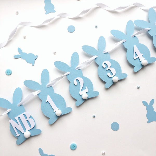 Boy Bunny 12 Month Banner