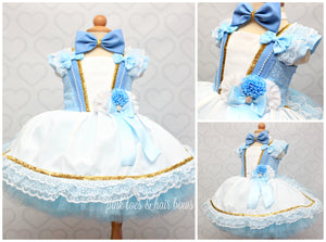 Alice in Wonderland tutu Dress-Alice in wonderland costume-Tea party dress-tea party costume