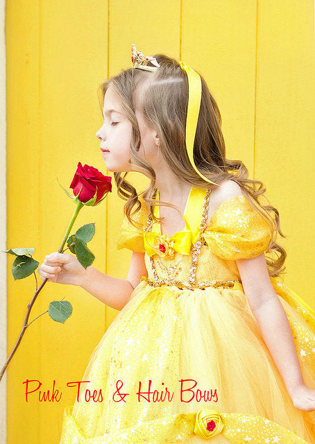 Princess Belle Tutu dress-Princess Belle dress- Princess belle dress-Princess Belle costume