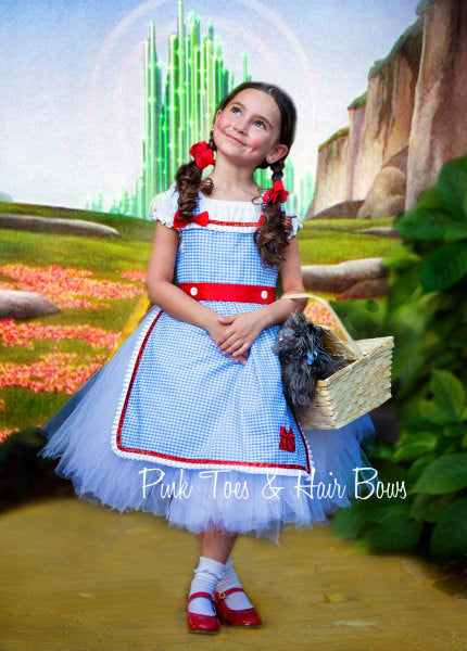 Dorothy Tutu dress- Wizard of oz tutu dress- Dorothy dress-Dorothy costume