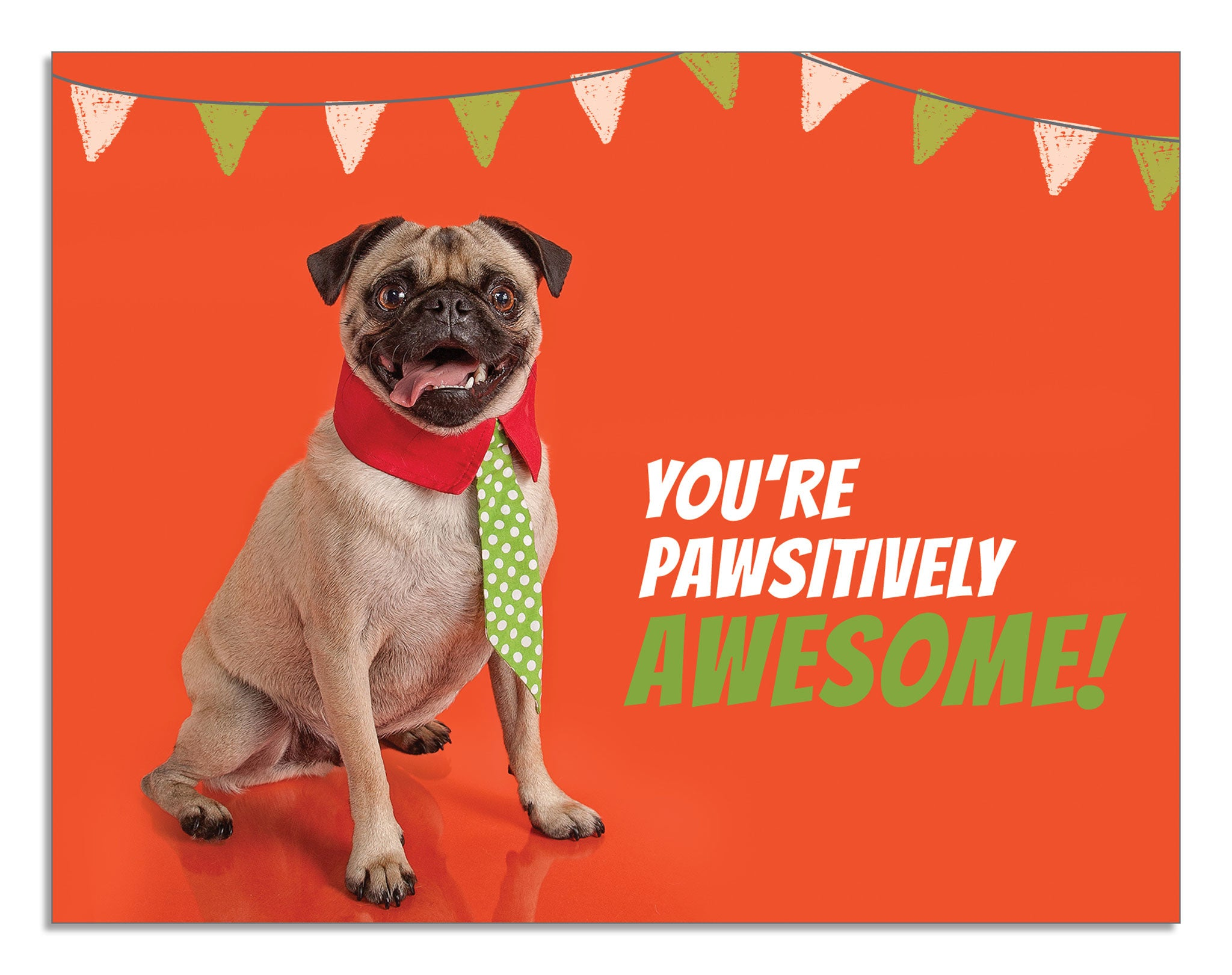 you re pawsitively awesome card blusys creative