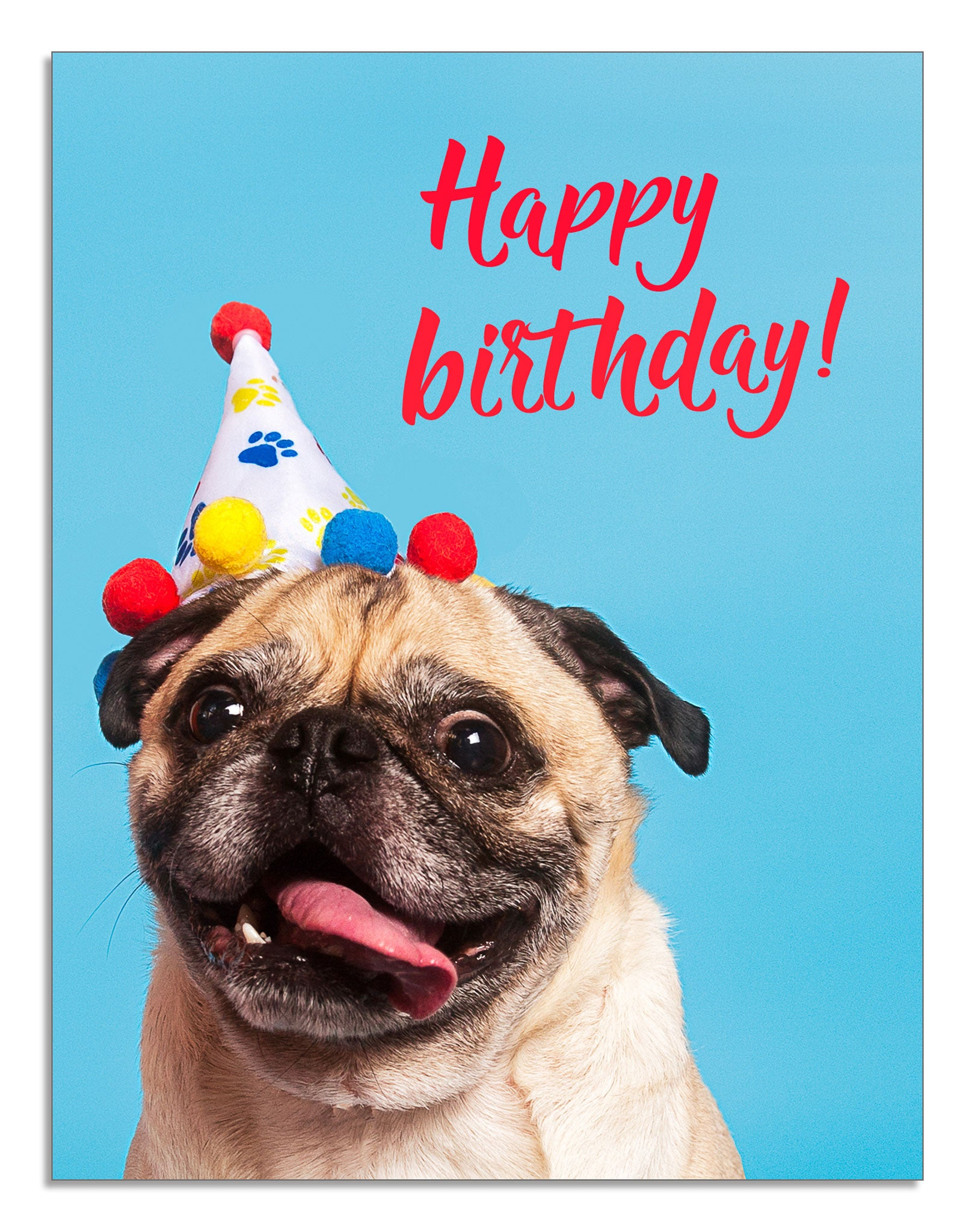 Smiling Pug Card Wishing You Happy Birthday By Blusys Creative