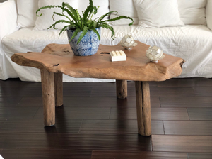 Live Edge Teak Root Wood Coffee Table Rustic Primitive Table