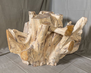 "Teak Wood Root Coffee Table with Glass Top 35.5""x35.5"", Modern Coffee Table #1 (COMING IN THE END OF AUGUST)"