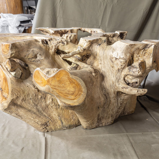 Teak Wood Root Coffee Table with Glass Top 35.5