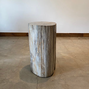 Beige Petrified wood stool block , fossil wood end table or coffee table