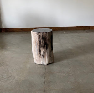 Light Beige, Cooper and Black Petrified  solid wood stool block , fossil wood side end table or coffee table 2