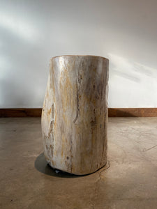 Light Beige and Black Petrified  solid wood stool block , fossil wood side end table or coffee table 4