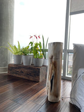 Load image into Gallery viewer, White and Black Petrified  long solid wood stool block , fossil wood side end table