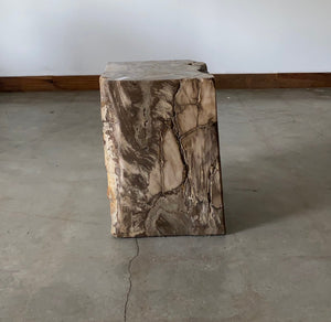 Brown Petrified wood stool block , fossil wood end table or coffee table 5