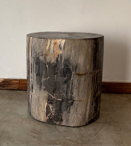 Black/Grey #17 Petrified wood stool block , fossil wood end table or coffee table 20