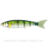 Nories NF60 Frog - Carolina Fishing Tackle LLC