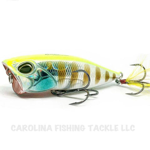 DUO Realis Popper 64 - Carolina Fishing Tackle LLC