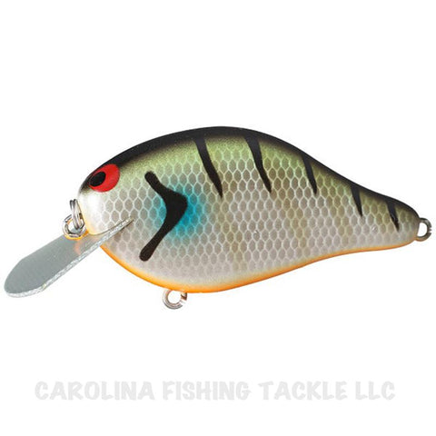 Ima Shaker JDM Crankbait (Select) - Carolina Fishing Tackle LLC