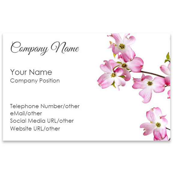 Business Cards (BC23-SS)