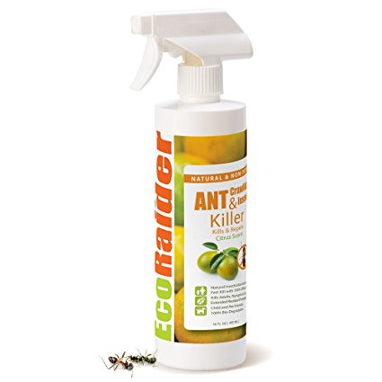 EcoRaider Natural Ant Repellant