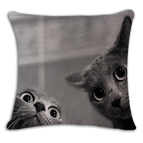 Vibrant Cat Pillow Case Collection