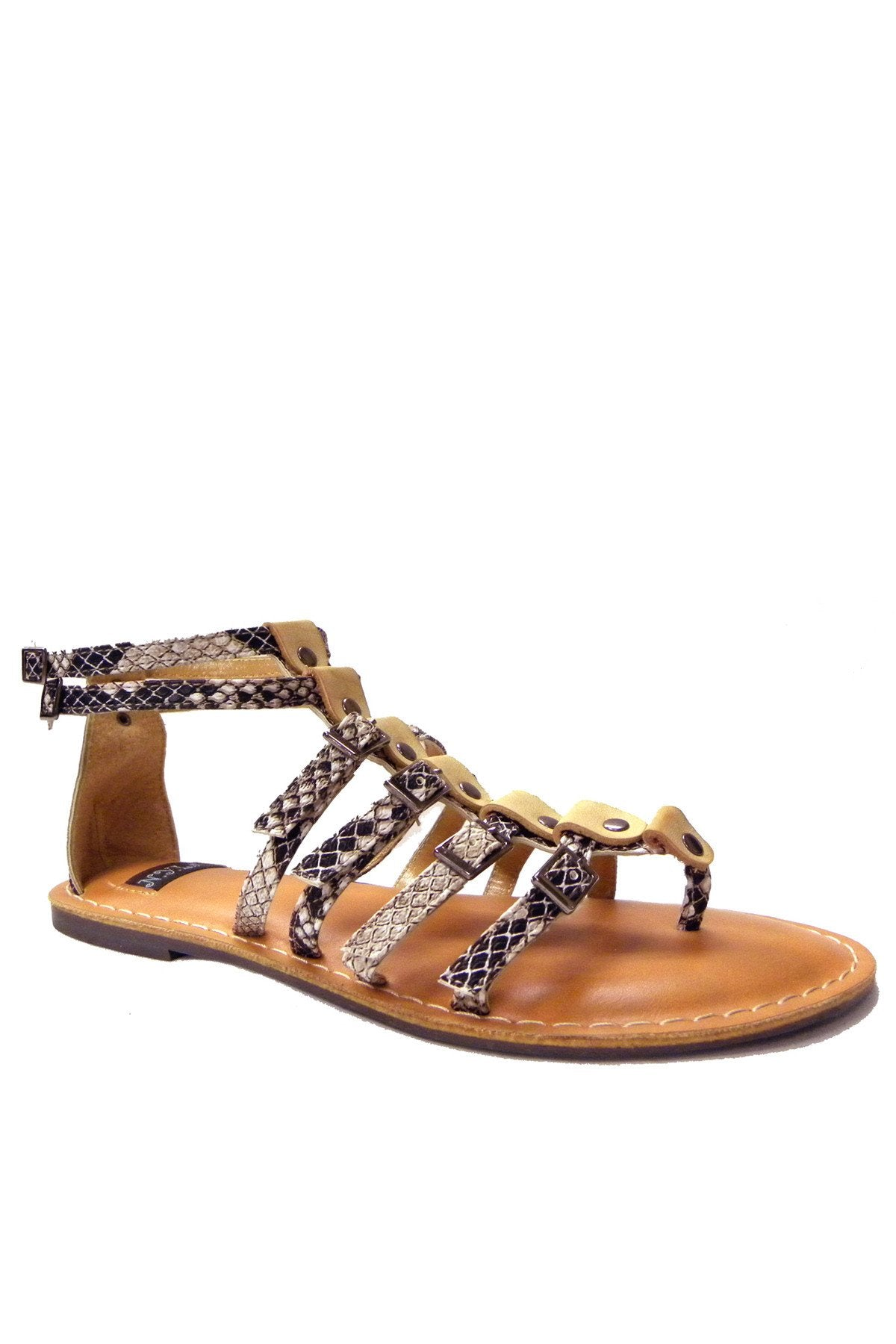 Woman Ankle Gladiator Sandals