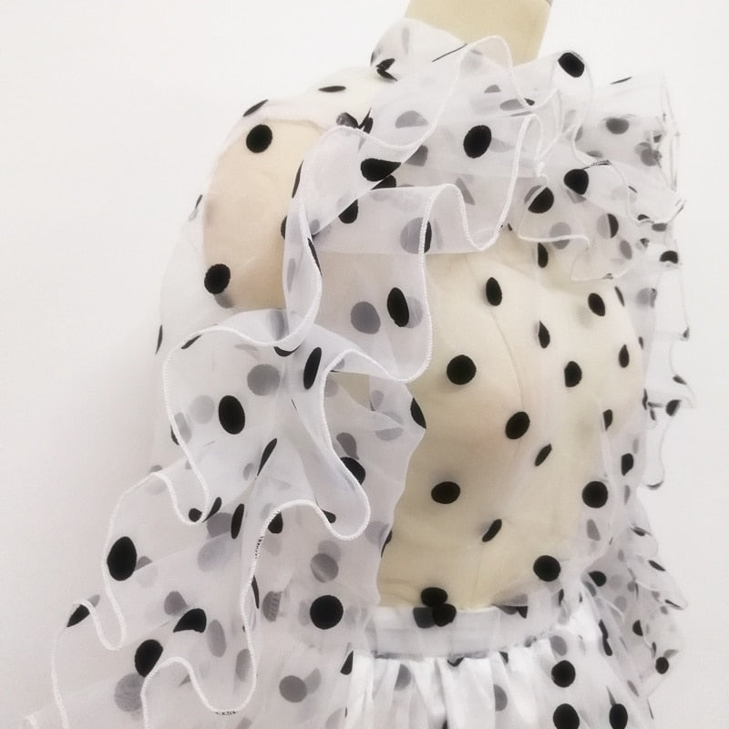 Women Sheer Polka Dot Blouse
