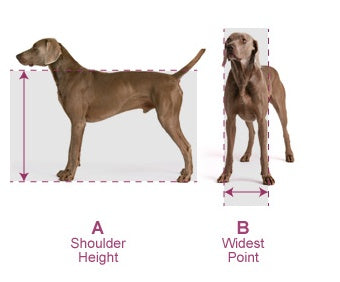 Hale Pet Door measurement guidelines