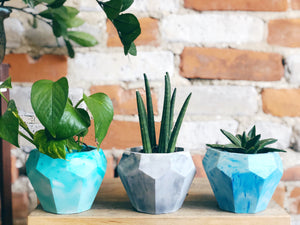 Large Gem Planter