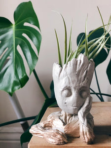 White and gold baby groot concrete/cement planter with airplant