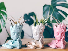 A lineup of cute concrete/cement planters with airplant in mint, pink, and whites