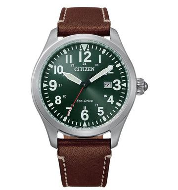 Citizen Eco-Drive Evergreen Watch - BM6838-25X