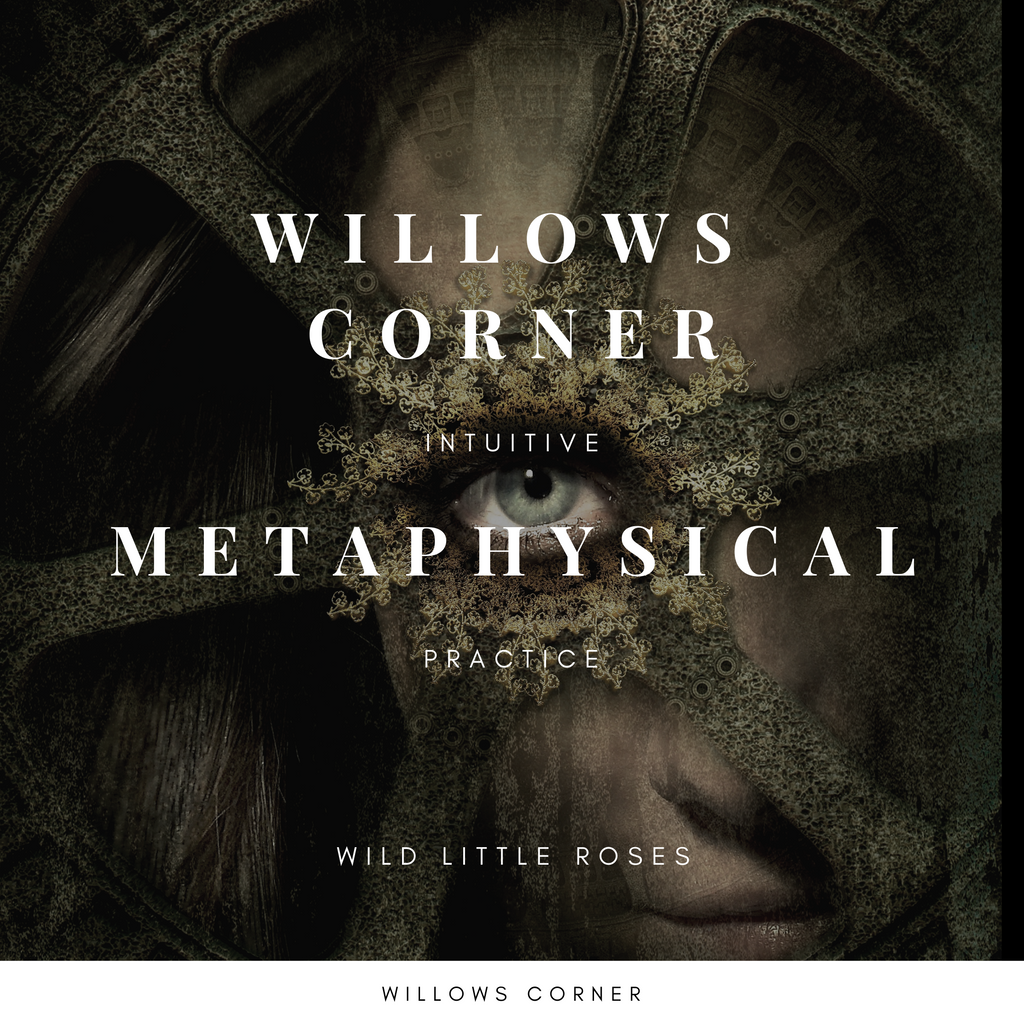 Willows Corner Intuitive Metaphysical Development Meet Up